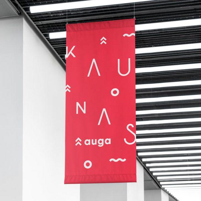 Kaunas-auga-3